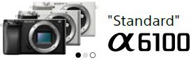 Standard Alpha 6100